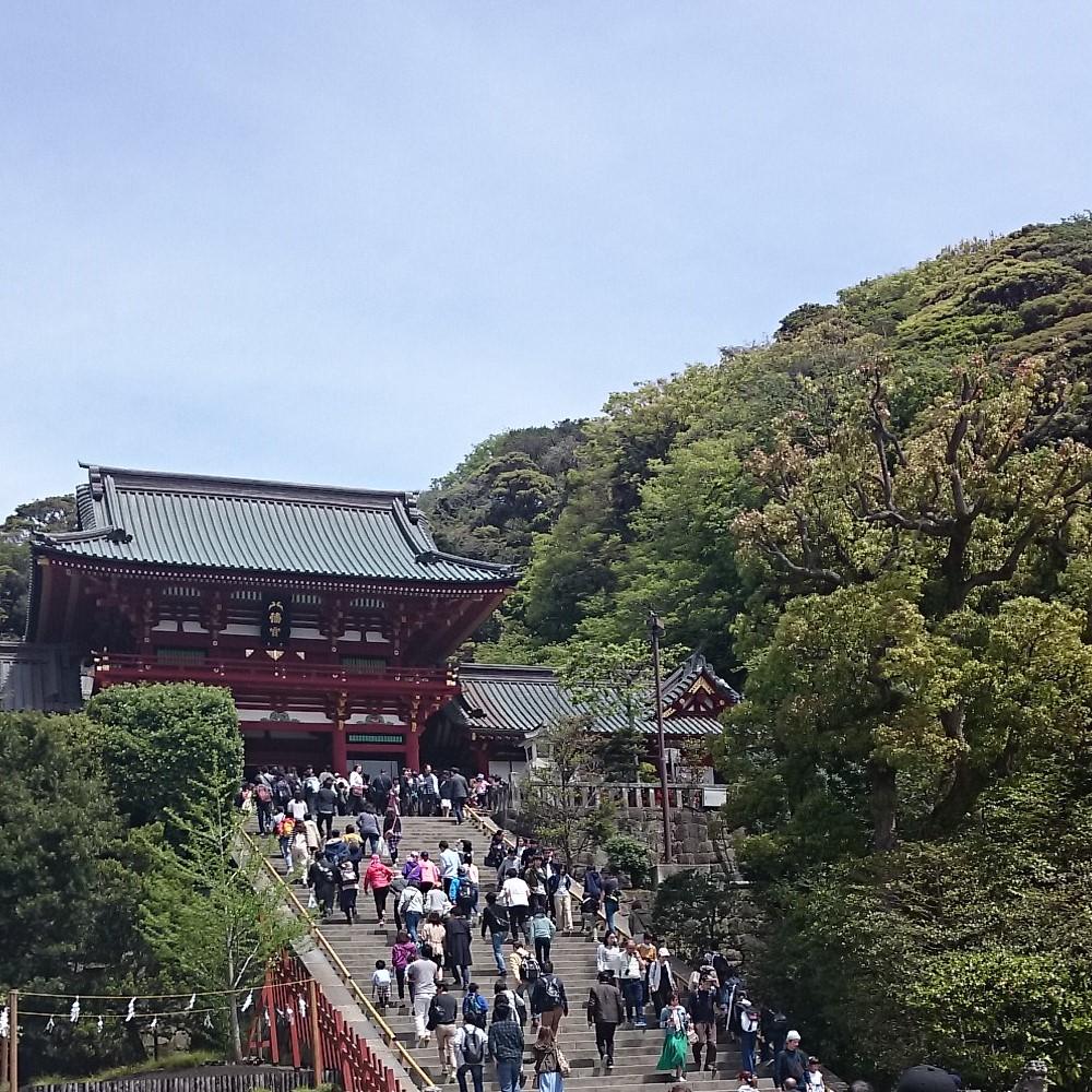 神奈川県鎌倉市の写真(鶴岡八幡宮)