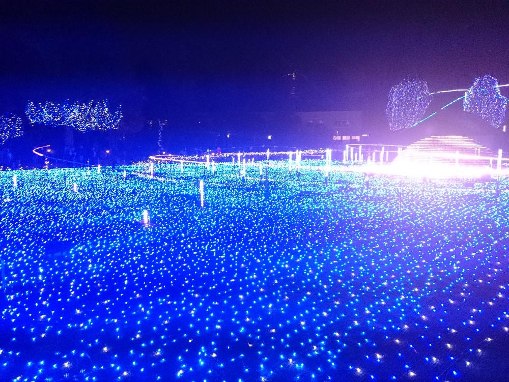 東京都港区の写真(TOKYO MIDTOWN CHRISTMAS)